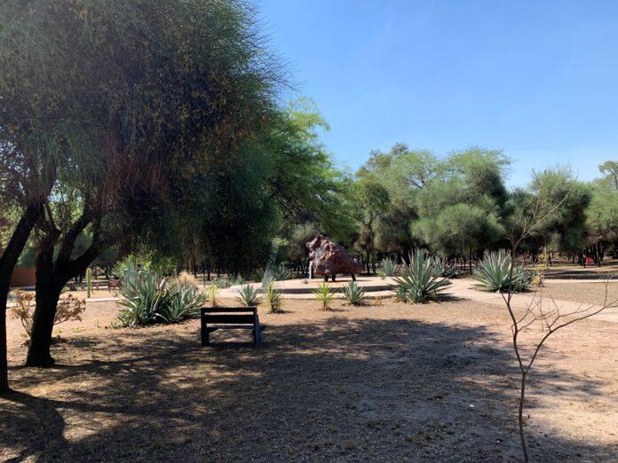 Trabajo de estudiantes para fortalecer el desarrollo de la reserva Campo del Cielo