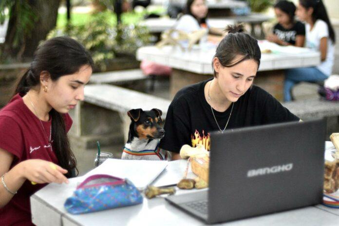 Estudiantes UNNE- Becas Conectividad