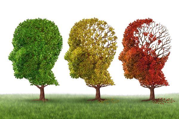 Nuevo fármaco contra el Alzheimer